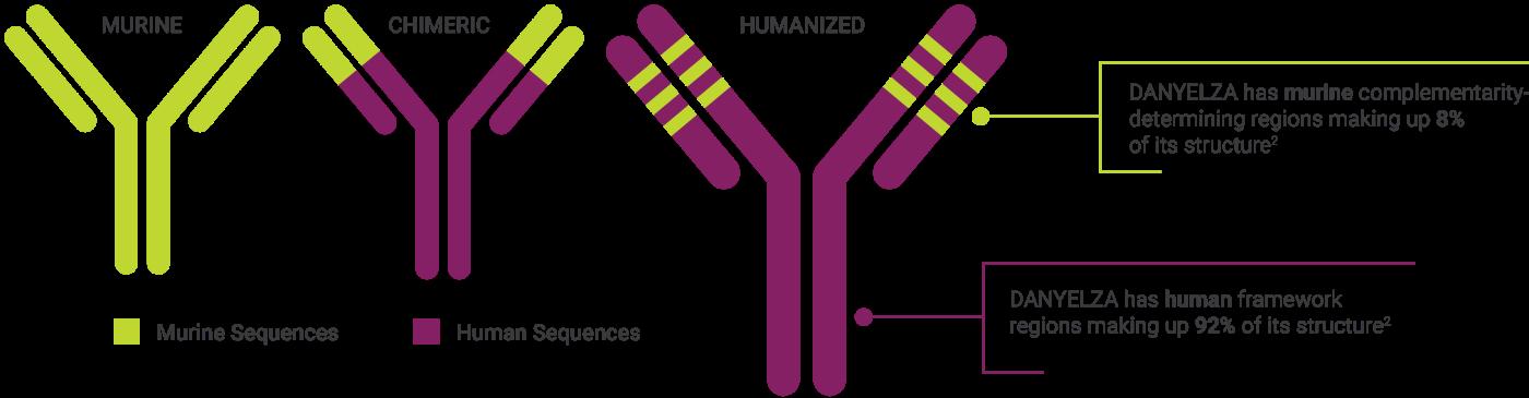 DANYELZA-antibody-graphic